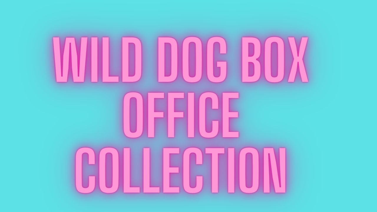 Wild Dog Box Office Collection